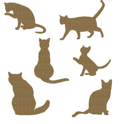 cats-800x800